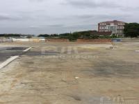 上海市辖区浦东新区露天堆场 2000㎡ 不限