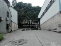 重庆市九龙坡区玻璃市场B区库房出租