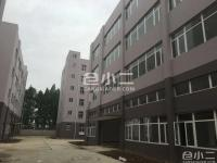 黄陂武湖农场四层框架结构和钢结构仓库厂房出租
