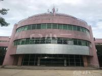 青山区优质办公楼、厂房、空地、住宿出租
