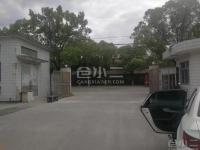 上海闵行区7米层高单层厂房仓库出租