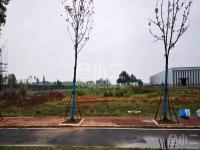 嘉鱼县200亩工业用地可分售可整售
