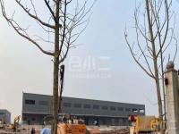 重庆巴南区双边高台库32000平出租