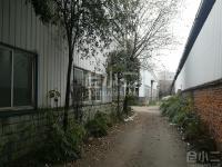 成都郫县现代工业港区单层钢结构厂房整体出租