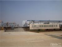庐江县钢结构厂房2500平出租
