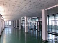 松江区优质楼库3楼诚意出租
