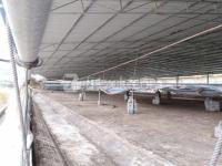 桂林市灵川县有棚堆场 2000㎡ 不限
