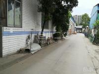 双流九江社区小面积框架单层结构仓库便宜出租