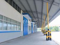 嘉兴嘉善县单层优质厂房盛大招租,距上海20分钟,性价比超高,1000平起租