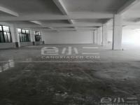 上海市青浦区多层仓库出租,一楼1250平米,二楼2000平米,104板块