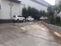 重庆市江津双福搞性价比厂房出租