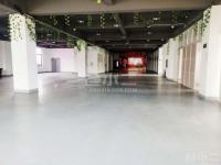 上海青浦影视文创园招租,25800平米,大小可分割,园区有现成的摄影棚,