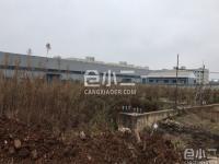 蔡甸区常福工业园自有工业用地可建厂房,已报规,低价出租