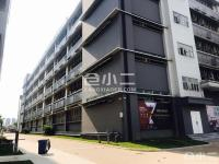 珠海斗门区高新无污染厂房、仓库出租,价格优惠,环境优美