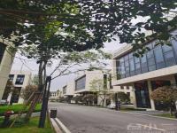 重庆市江津区1000-3000平米优质坡道厂房出售