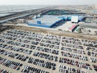 出租天津港附近硬化场地 20万平米 可分割